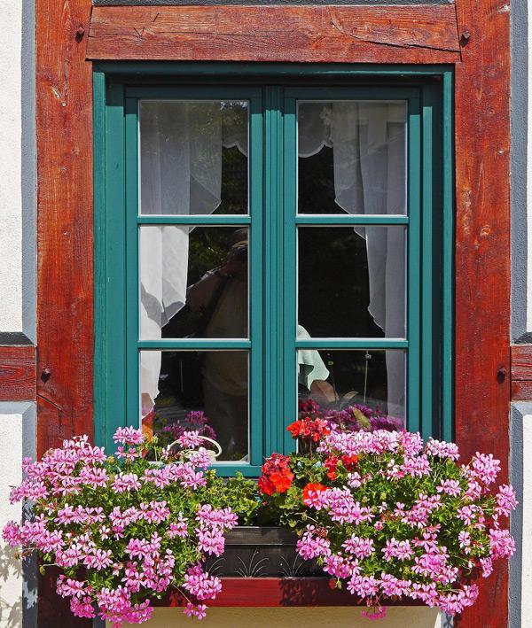 Exterior Windows Platinum Brush Painting